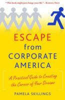 Escape from Corporate America book summary