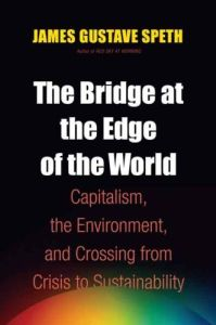 The Bridge at the Edge of the World book summary
