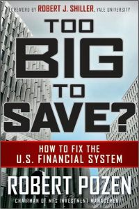 Too Big to Save? book summary