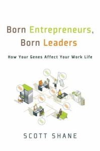 Born Entrepreneurs, Born Leaders book summary