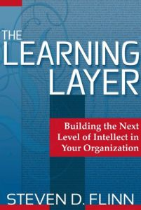 The Learning Layer book summary