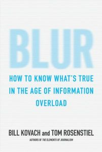 Blur book summary