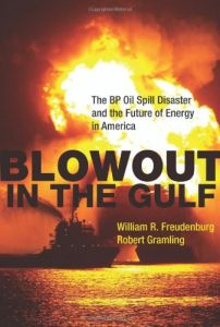 Blowout in the Gulf book summary