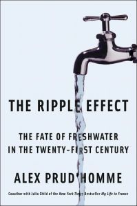 The Ripple Effect book summary