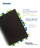 The Public Innovator's Playbook book summary