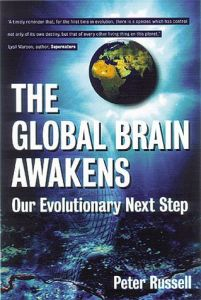 The Global Brain Awakens book summary