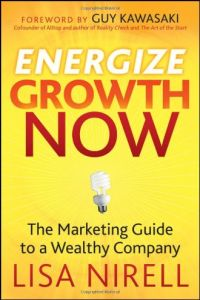 EnergizeGrowth Now book summary