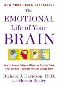 The Emotional Life of Your Brain book summary