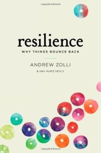 Resilience book summary