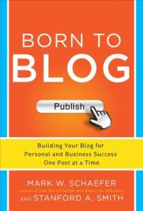 Born to Blog book summary