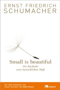 Small is beautiful Buchzusammenfassung
