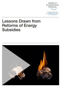 Lessons Drawn from Reforms of Energy Subsidies  summary
