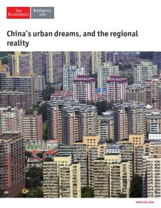 China's Urban Dreams, and the Regional Reality summary