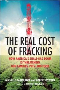 The Real Cost of Fracking book summary