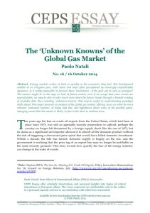 The 'Unknown Knowns' of the Global Gas Market  summary