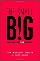 The Small Big book summary