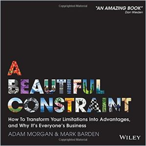 A Beautiful Constraint book summary