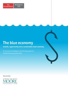 The Blue Economy summary