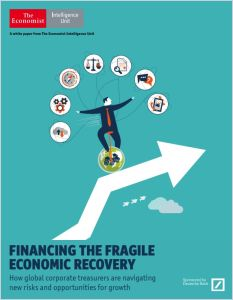 Financing the Fragile Economic Recovery