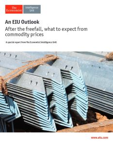 After the Freefall, What to Expect from Commodity Prices summary