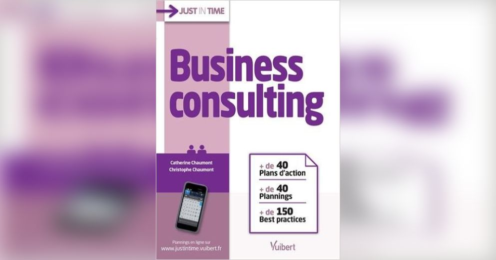 Business consulting r sum christophe chaumont et for Christophe chaumont