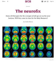 The Neurofix summary