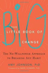 The Little Book of Big Change book summary