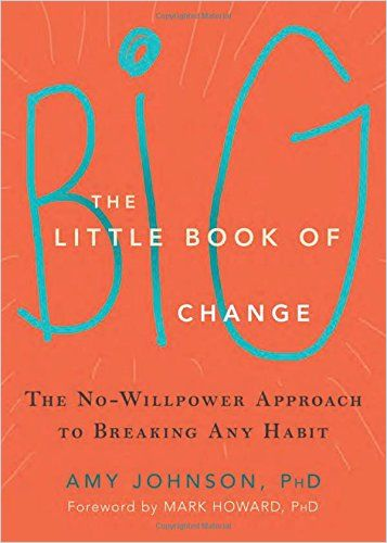 Image of: The Little Book of Big Change
