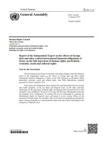 Report of the Independent Expert on the Effects of Foreign Debt summary