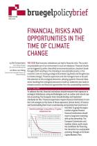 Financial Risks and Opportunities in the Time of Climate Change