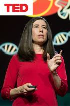 What You Need to Know About CRISPR