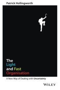 The Light and Fast Organisation book summary
