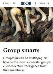 Group Smarts summary