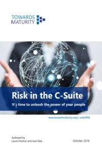 Risk in the C-Suite summary