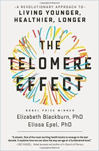 The Telomere Effect book summary