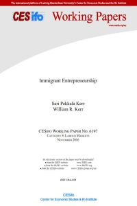 Immigrant Entrepreneurship summary
