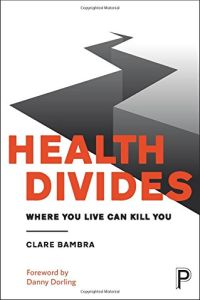 Health Divides book summary