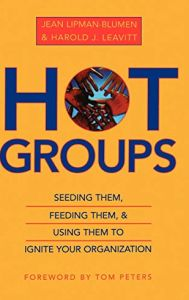 Hot Groups book summary