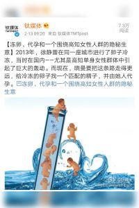 Egg Freezing and Surrogacy: An Emerging Business Targeting Elite Single Women in China summary