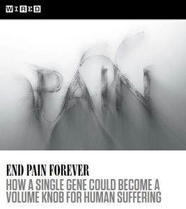 End Pain Forever summary