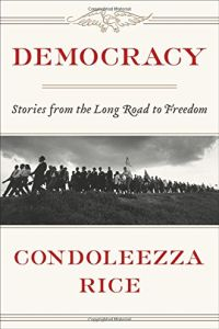 Democracy book summary