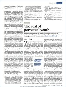 The Cost of  Perpetual Youth summary