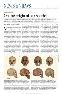 On the Origin of Our Species summary