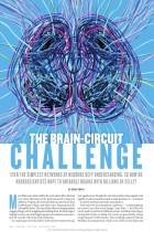 The Brain-Circuit Challenge