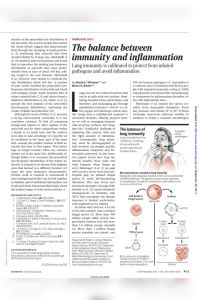 The Balance Between Immunity and Inflammation summary