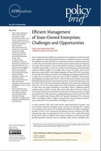 Efficient Management of State-Owned Enterprises summary