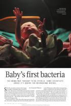 Baby's First Bacteria