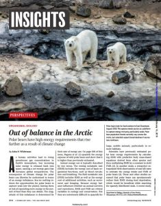 Out of Balance in the Arctic summary