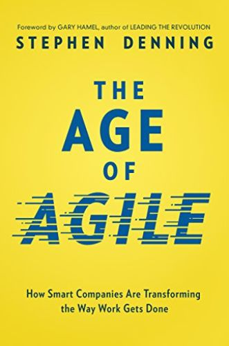 Image of: The Age of Agile