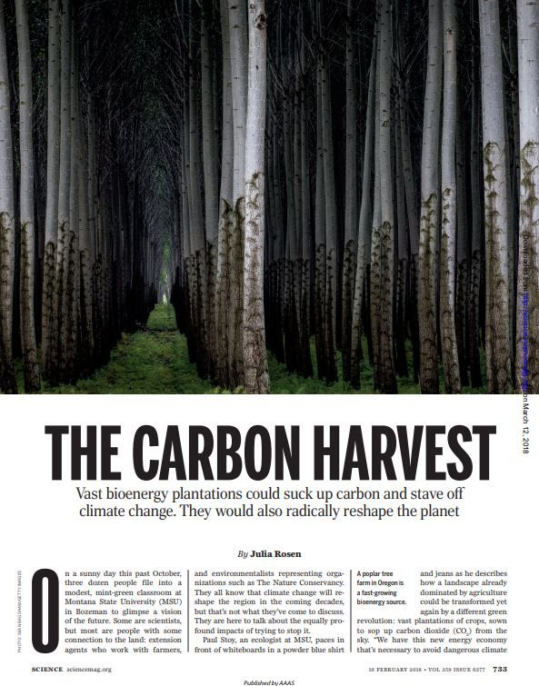 Image of: The Carbon Harvest